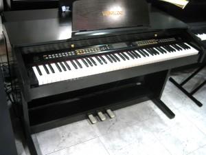 IMG 4510